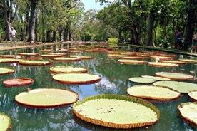 Wild life sanctuaries in India